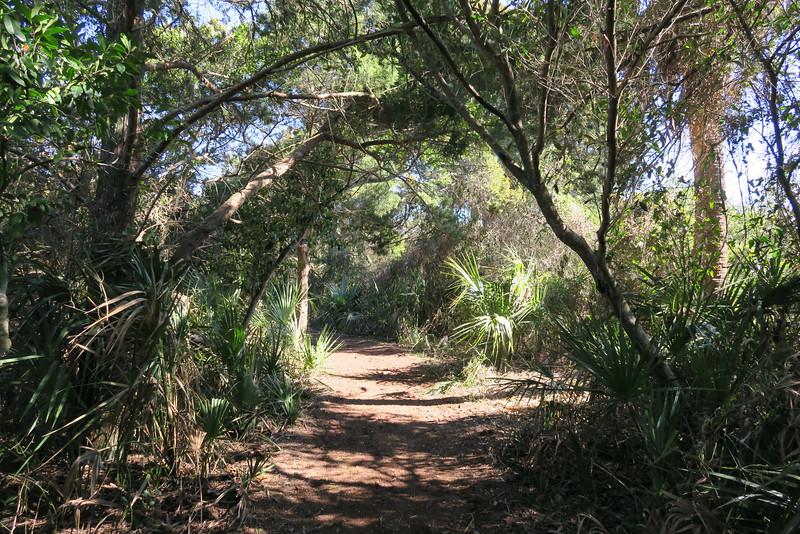 Lighthouse Overlook Trail