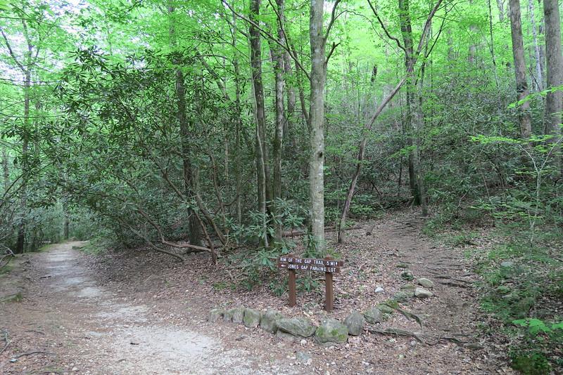 Jones Gap-Rim of the Gap Trail Junction