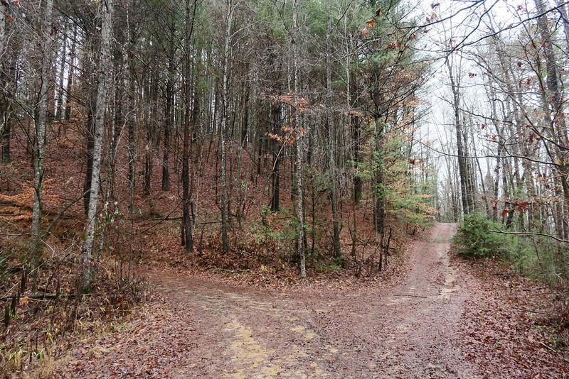 Long Creek Falls Trail (F.R.755I)