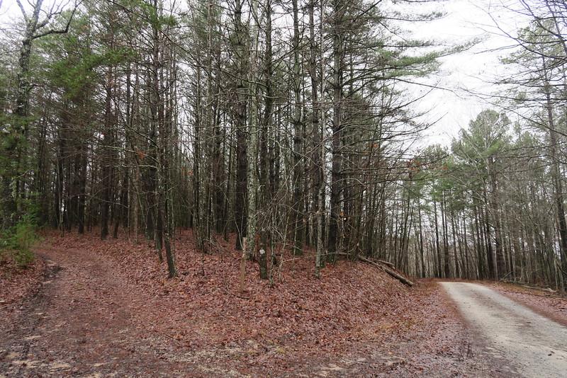 Turkey Ridge Road/F.R.755 Junction