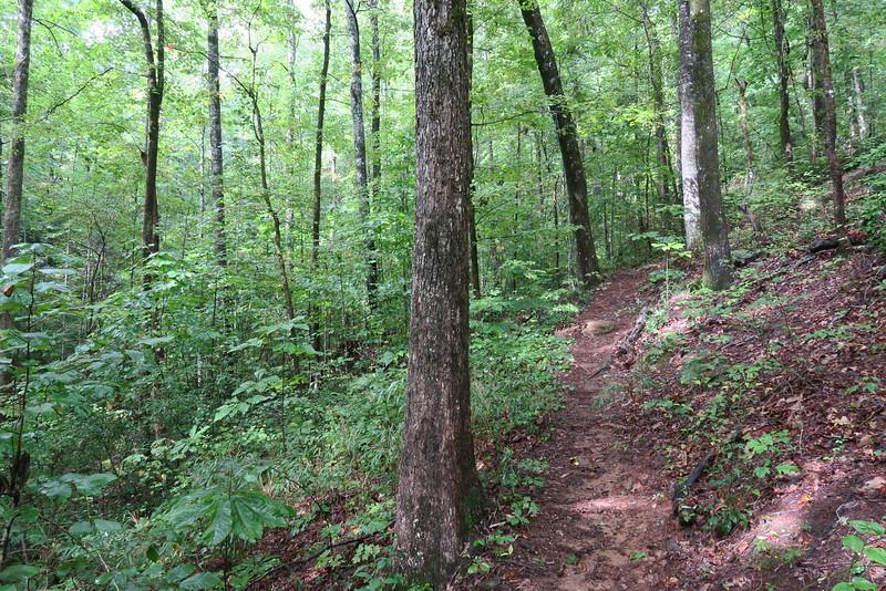 Cascade Falls Spur Trail