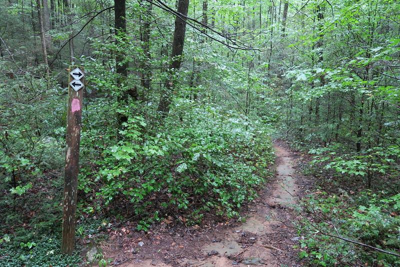 Asbury-Naturaland Trust Trail Junction