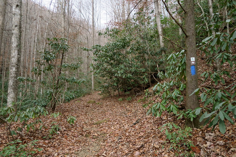 Jones Gap Trail -- 2,020'