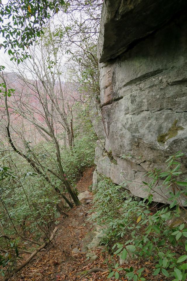 Bill Kimball Trail -- 2,650'