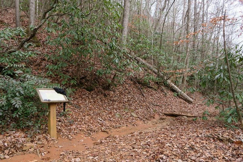 Bill Kimball-Jones Gap Trail Junction -- 2,000'