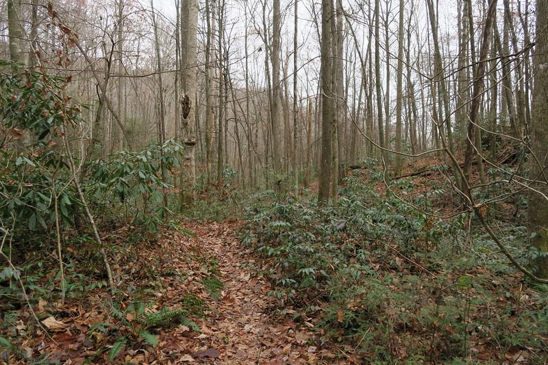 Bill Kimball Trail -- 2,240'