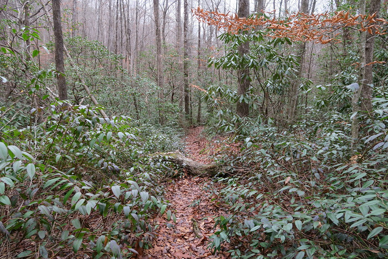 Bill Kimball Trail -- 2,150'