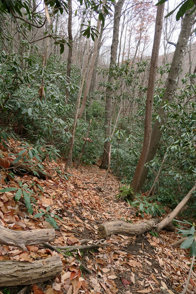 Bill Kimball Trail -- 2,400'