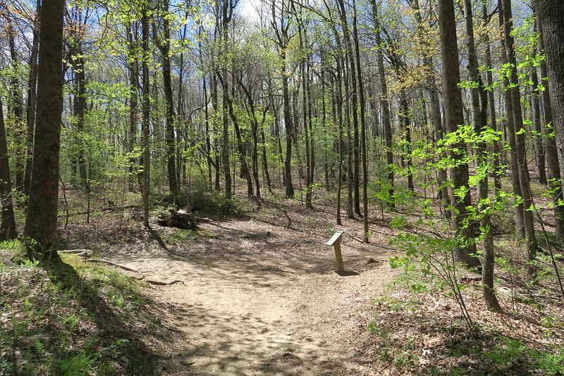 Foothills-Raven Cliff Falls Trail Junction