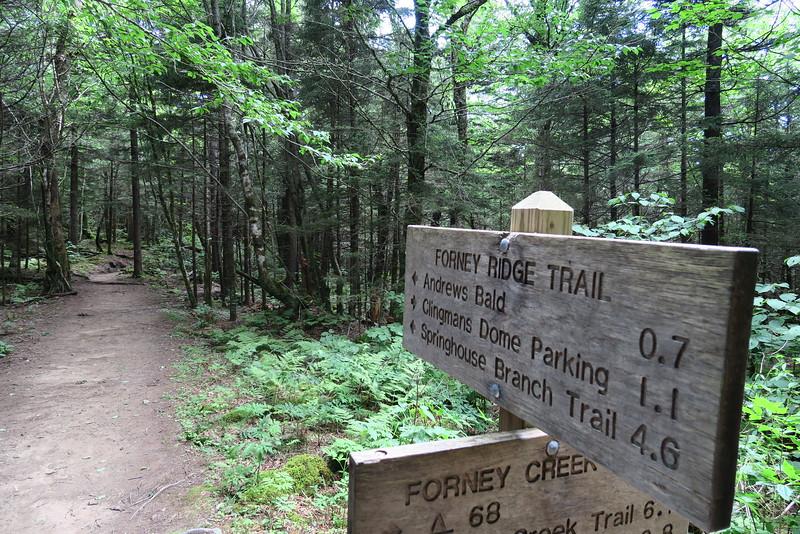 Forney Ridge-Forney Creek Trail Junction - 5,750'
