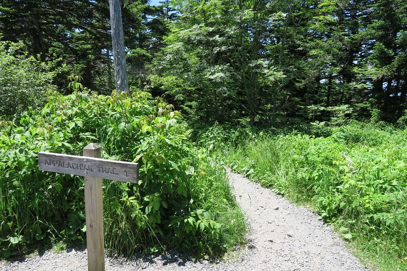 Appalachian Trail - Clingman's Dome Spur Path - 6,600'
