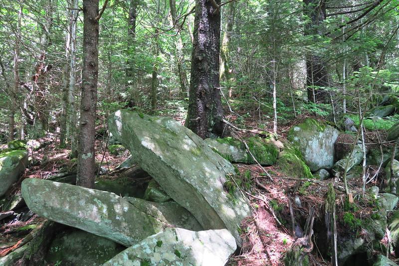 Forney Ridge Trail - 5,950'