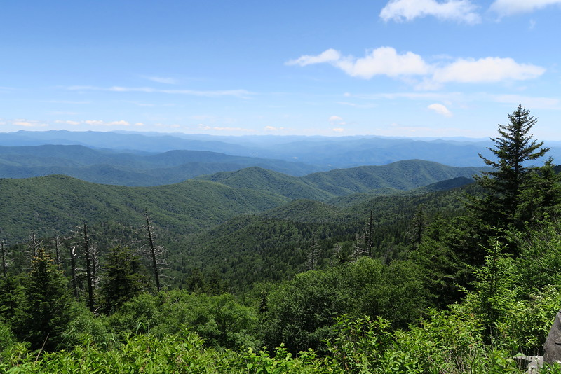 Clingman's Dome Parking Area - 6,280'