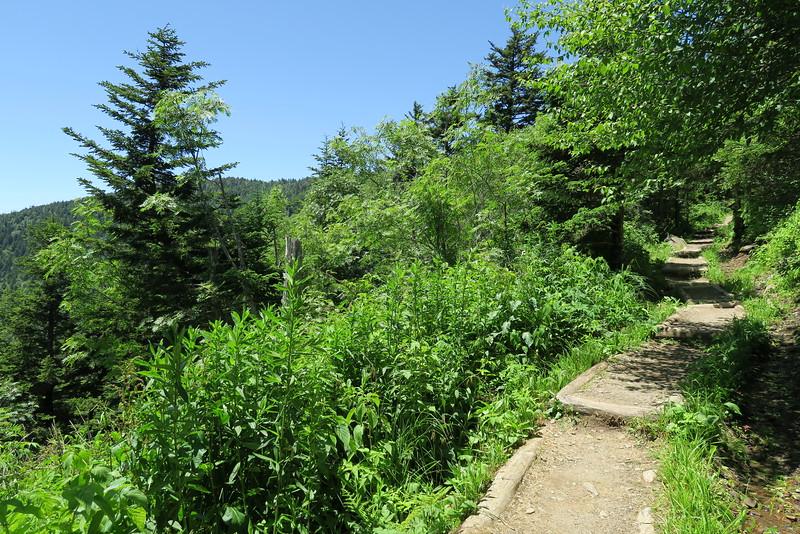Forney Ridge Trail - 6,100'
