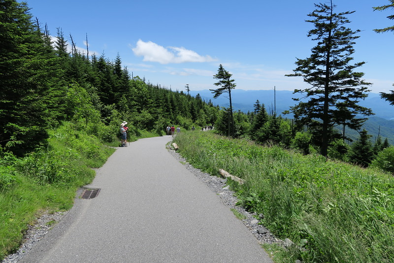Clingman's Dome Summit Trail - 6,400'