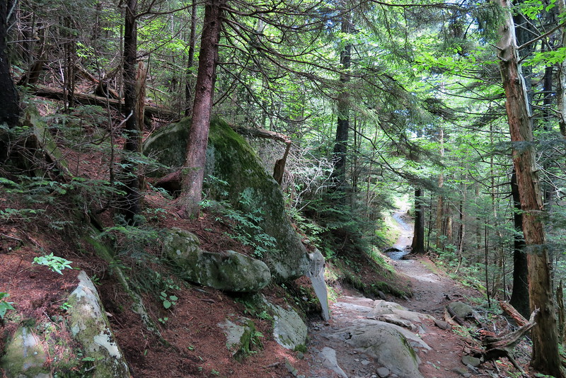Forney Ridge Trail - 5,900'