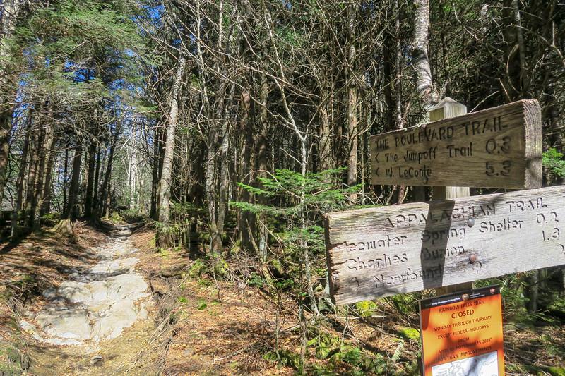 Appalachian-The Boulevard Trail Junction - 6,040'