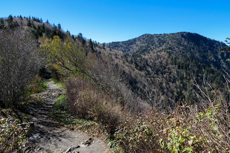 Charlie's Bunion Spur-Appalachian Trail Junction - 5,550'