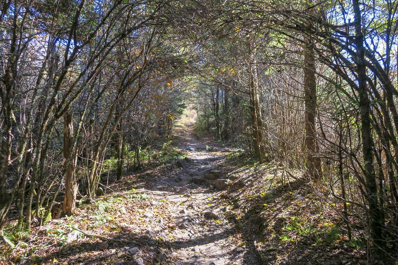 Appalachian Trail - 5,850'