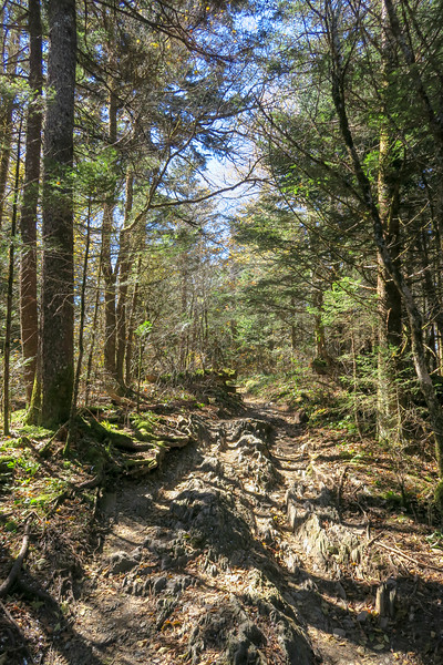 Appalachian Trail - 5,840'