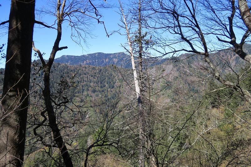 Appalachian Trail - 5,500'