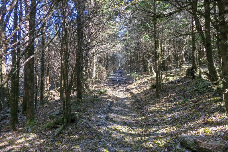 Appalachian Trail - 6,050'