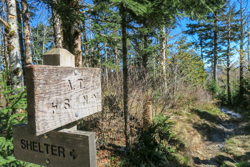 Appalachian Trail @ Icewater Spring Shelter - 5,950'