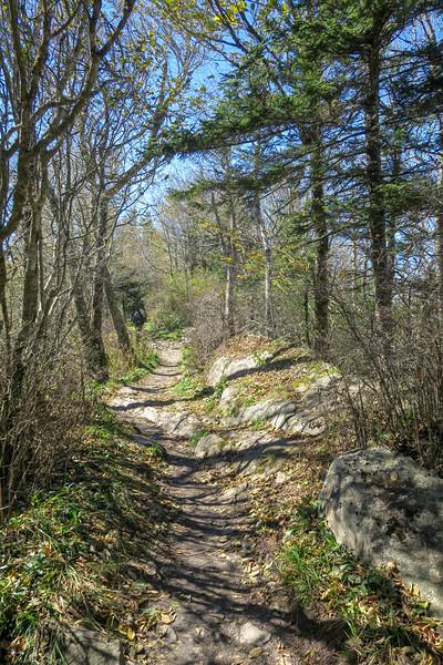 Appalachian Trail - 5,300'
