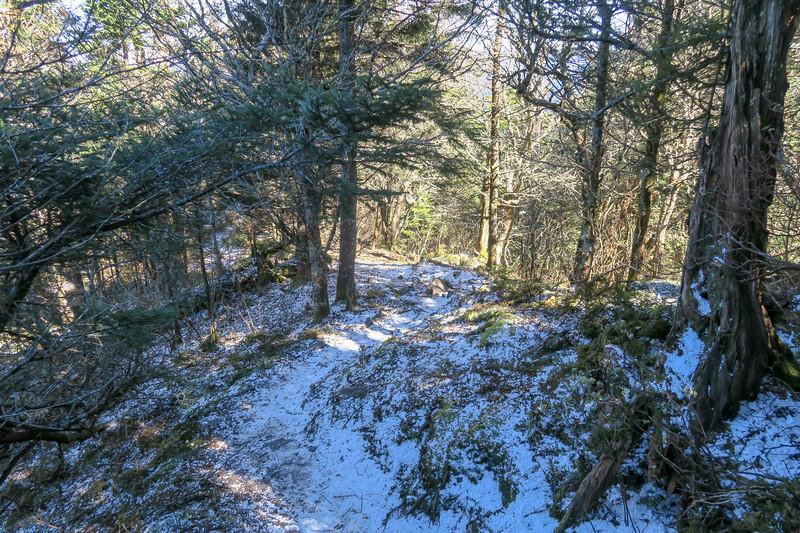 Jumpoff Spur Trail - 6,180'