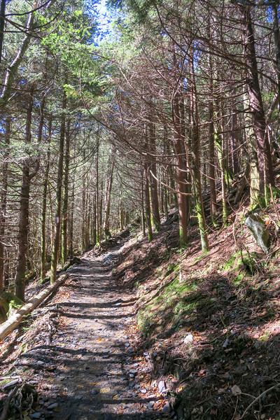Appalachian Trail - 5,920'