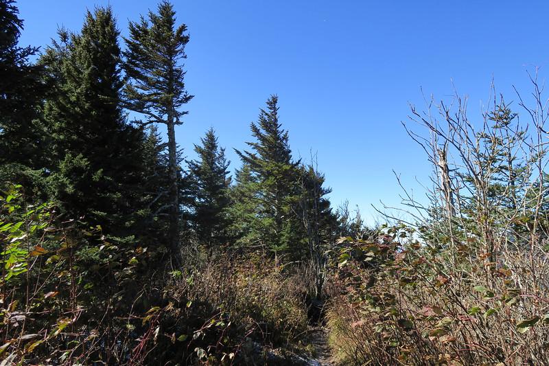 Mount Kephart -- 6,217'