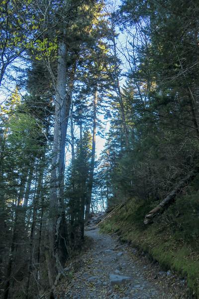 Appalachian Trail - 5,600'
