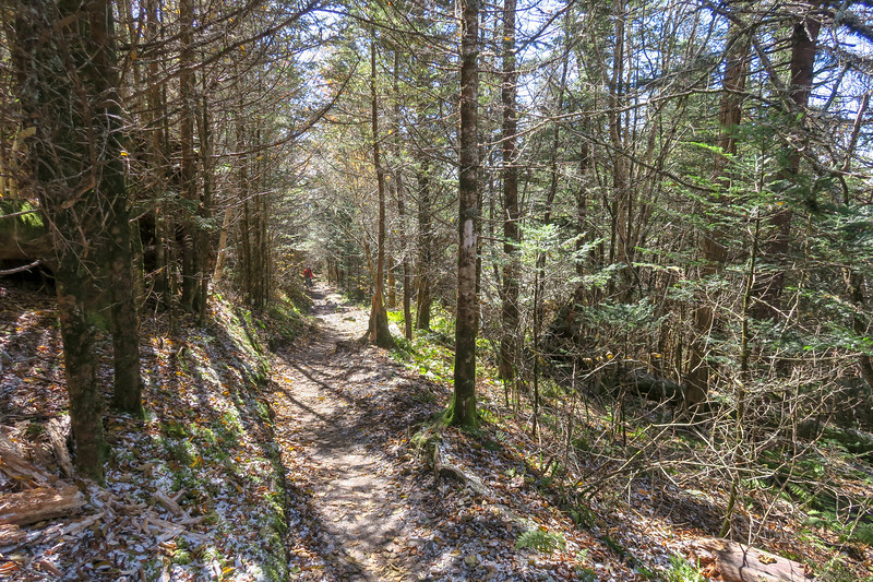 Appalachian Trail - 5,950'