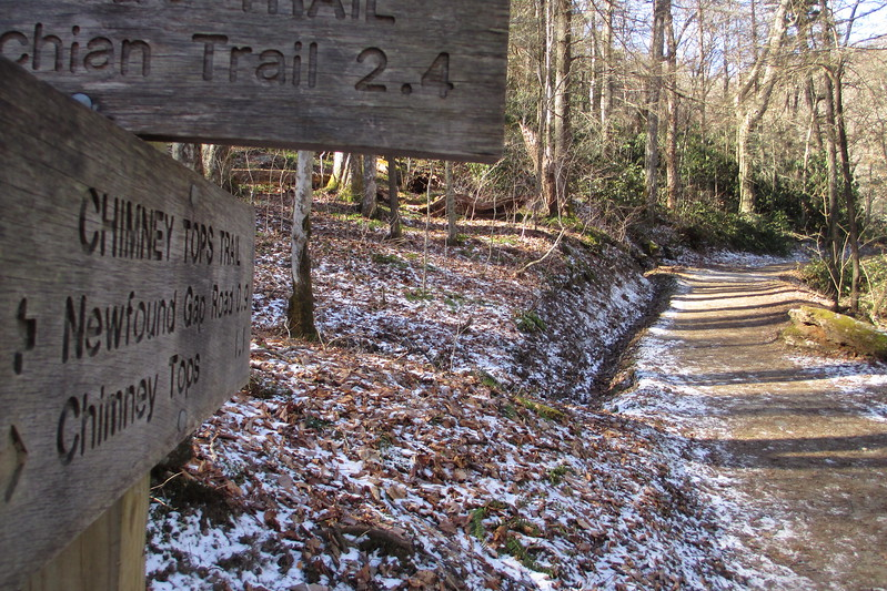 Road Prong/Chimney Tops  Trail Junction - 3,786'