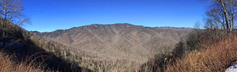 Newfound Gap Road (US-441)