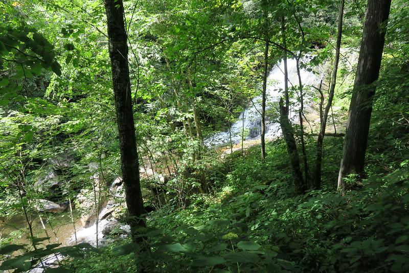 Enloe Creek Falls Bushwhack - 3,690'