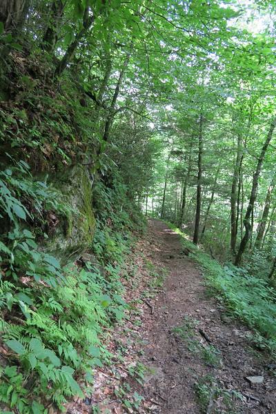 Enloe Creek Trail - 3,850'