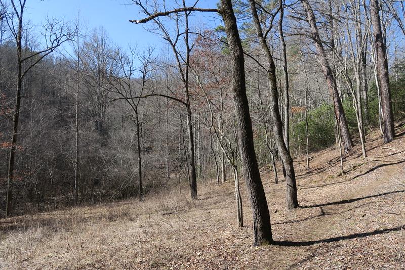Goldmine Loop Trail