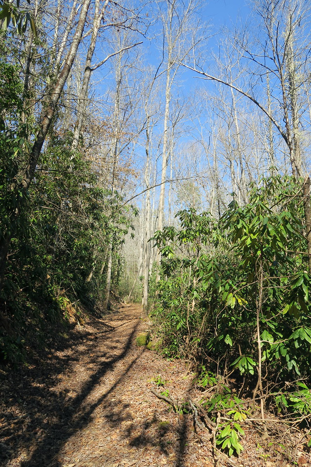 Goldmine Loop Trail