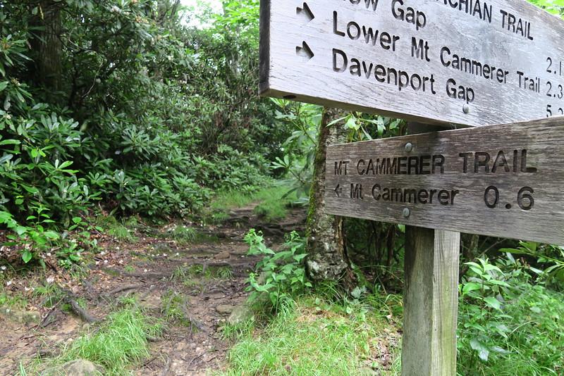 Appalachian - Mount Cammerer Trail Junction - 4,950'
