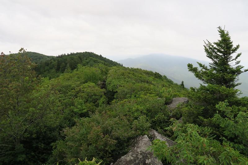 Mount Cammerer Trail - 4,880'