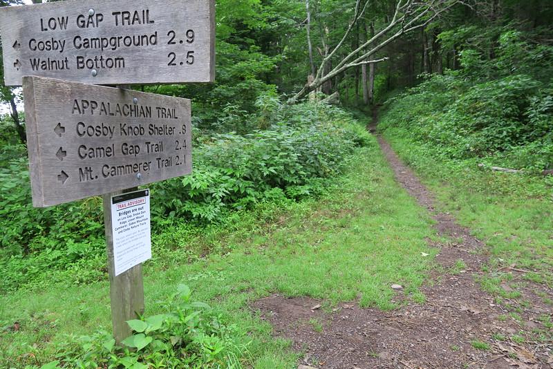 Low Gap - Appalachian Trail Junction - 4,242'