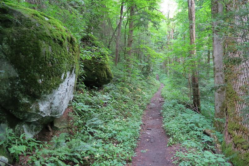 Low Gap Trail - 2,600'