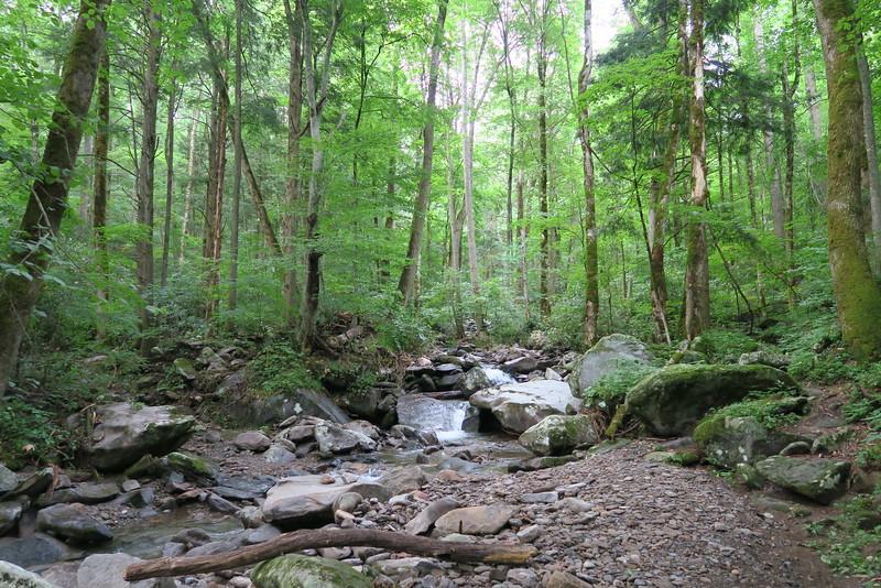 Low Gap Trail - 2,560'