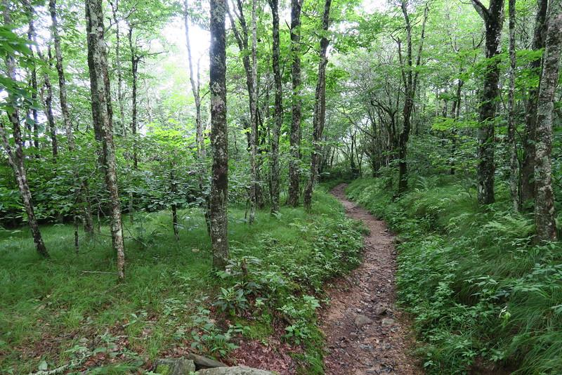 Appalachian Trail - 5,040'