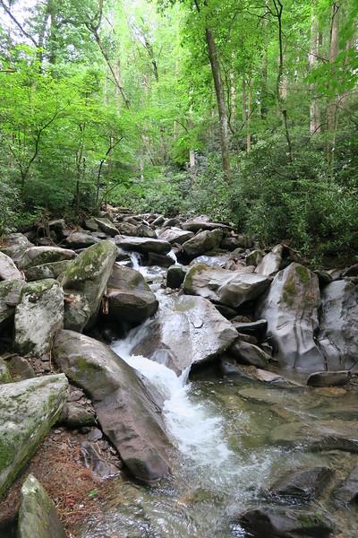 Cosby Creek - 2,700'