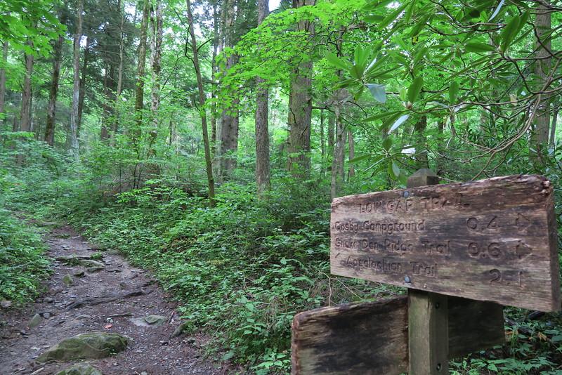 Low Gap - Lower Mount Cammerer Trail Junction - 2,570'