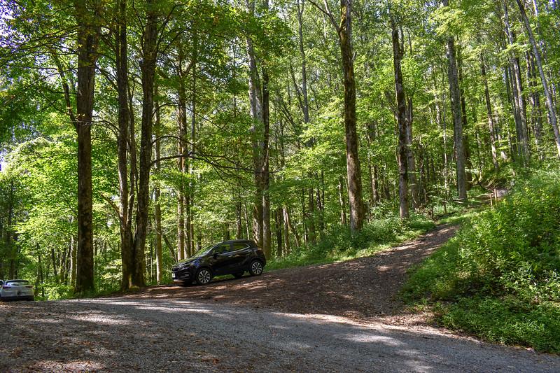 Mount Sterling Gap Trailhead -- 3,888'