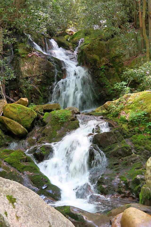 Mouse Creek Falls