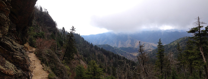 <b>6,350'</b> - Just before curving around to make the final ascent to the top, the trail pulls out all the stops with this sweeping panorama, beneath overhanging and exposed cliffs, over the 3,000-foot deep Walker Camp Prong Gorge towards the Clingmans Dome massif...